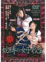 「蛇縛の女子校生Select 折原栞 新堂真美 江藤七海」のパッケージ画像