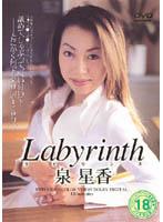 「labyrinth 泉星香」のパッケージ画像