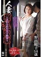 「人妻痴漢電車〜さわられた五十路母〜 野宮陽子」のパッケージ画像