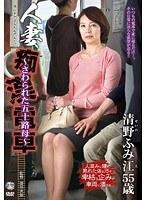「人妻痴○電車~さわられた五十路母~ 清野ふみ江」のパッケージ画像
