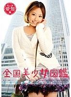 「全国美少女図鑑11 名古屋美少女かなちゃん」のパッケージ画像