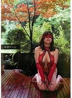「卑猥な人妻」のパッケージ画像