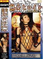 「熟女ヒロイン 14」のパッケージ画像