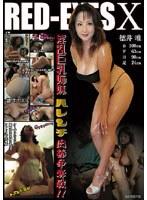 「淫乱巨乳姉妹 ハレンチ肉棒争奪戦!!」のパッケージ画像