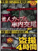 「発情 素人カップル車内交尾 盗撮4時間」のパッケージ画像