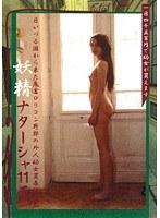 「妖精ナターシャ11再。」のパッケージ画像