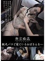 「観光バスで寝ているおばさんを…」のパッケージ画像
