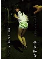 「無言痴姦 夜の一人歩きはアブナイよ…」のパッケージ画像