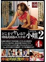 「どこまでヤレる!?中国式回春エステの小姐2」のパッケージ画像
