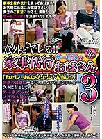 「意外とヤレる!!家事代行サービスのおばさん3」のパッケージ画像