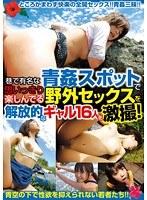 「巷で有名な青姦スポットで思いっきり野外セックスを楽しんでる解放的なギャル16人を激撮!」のパッケージ画像