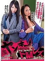 「ヤンキーのあの子はドMレズ あおいれな 藤本紫媛」のパッケージ画像