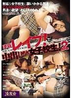 「凌辱レイプ!中出しされた女子校生! 2」のパッケージ画像