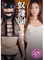 「奴隷ROOM room:01」のパッケージ画像