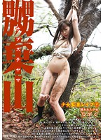 [MAD-137] Shizuku – Girl Kidnapped In The Mountains 9 (690MB MKV x264)