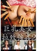 「巨乳美女拉致強姦 2」のパッケージ画像
