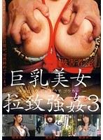 「巨乳美女拉致強姦 3」のパッケージ画像