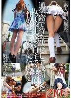 「通学路で待ち伏せして誘拐した女子校生達を自宅で監禁し性奴隷に調教した記録 2」のパッケージ画像