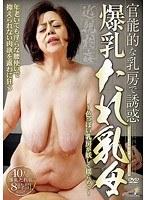 官能的な乳房で誘惑 爆乳たれ乳母 40人8時間