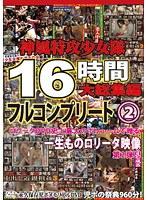 「神風特攻少女隊 16時間大総集編 フルコンプリート 2」のパッケージ画像