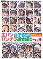 「生パン女子校生パンチラ逆さ撮り Vol.3」のパッケージ画像