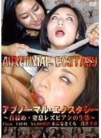 「アブノーマル・エクスタシー ~首絞め・窒息レズビアンの生態~」のパッケージ画像