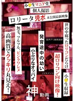 「小●生マニア堂 ロ●ータ児ポ 個人撮影未公開最新映像」のパッケージ画像