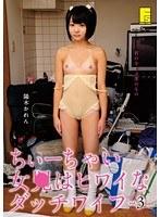 「ちぃーちゃい女●はヒワイなダッチワイフ 3 陽木かれん」のパッケージ画像