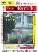 愛知県「小○校6年生」SEX動画 神レベル 本物小○生