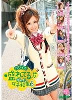 「カワイさ盛れてるギャル女子校生 6」のパッケージ画像