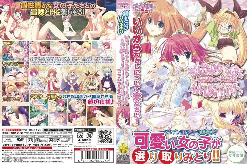 【DVDプレイヤーズゲーム】 WIZARD GIRL AMBITIOUS(...