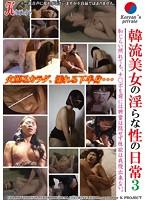 「韓流美女の淫らな性の日常 3」のパッケージ画像