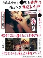 「下校途中の小●生を拉致って生ハメ集団レ○プ」のパッケージ画像