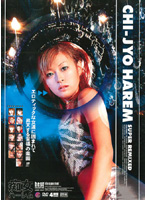 「CHI-JYO HAREM SUPER REMIXED」のパッケージ画像