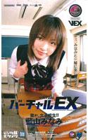 「バーチャルEX 励まし女子校生!! 藍山みなみ」のパッケージ画像