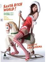 「SANTA BITCH WORLD! 愛嶋リーナ」のパッケージ画像