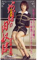 「女教師 蛇縛の肉奴隷」のパッケージ画像