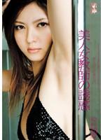 「ギリギリモザイク 美人女教師の誘惑 仲村知夏」のパッケージ画像