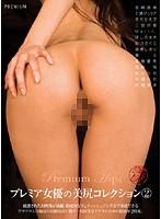 「プレミア女優の美尻コレクション 2」のパッケージ画像