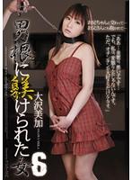 「男根に躾けられた女6 大沢美加」のパッケージ画像