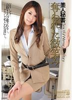 美人秘書 奪われた微笑み 岬リサ×鈴木杏里 アタッカーズ [DVD]