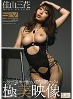 無料SEX動画