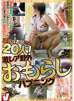 「綺麗なお姉さん20人!激レア野外おもらしハプニング」のパッケージ画像