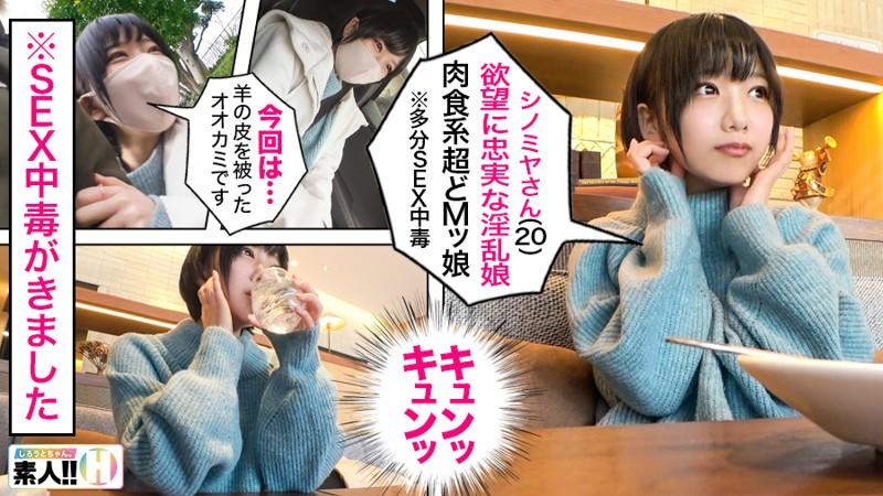 シノミヤさん 画像1
