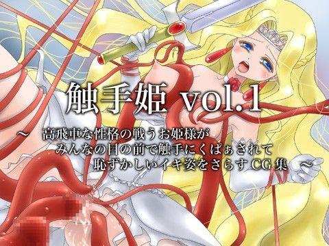 触手姫vol.1 〜高飛車な性格の戦うお姫様がみんなの前で恥ず...