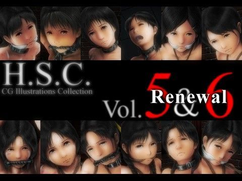 H.S.C. イラストコレクション Vol.5&6 Renewal