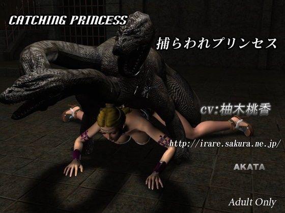 Catching Princess