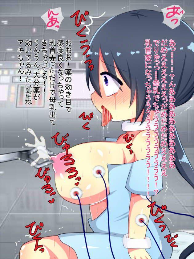 【ねこや 同人】人体改造拡張実験~壊されていく少女の肉穴~