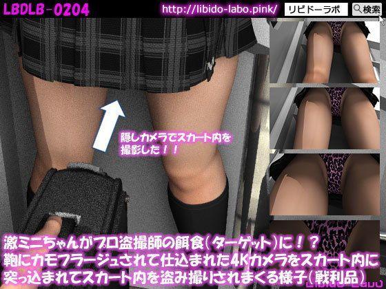 (戦利品)激ミニちゃんがプロ盗撮師の餌食(ターゲット)に!?鞄にカモフラージュされて仕込まれた4K...