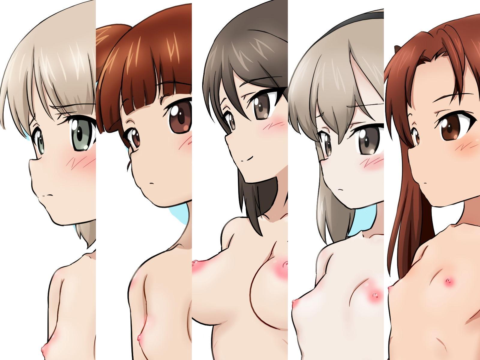 性教育教材になった女たち -戦車女子篇II-